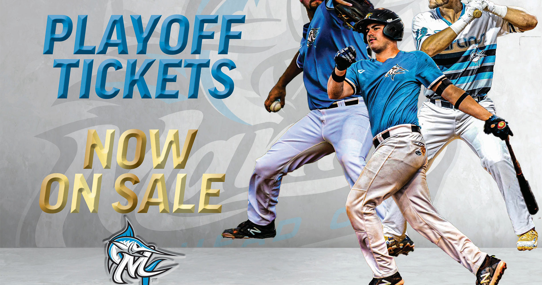 Playoff tickets on sale NOW!